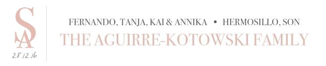blog_tanja-fer_title-header